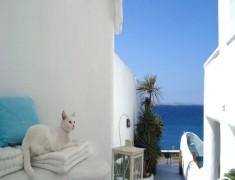 Септемврийски празници остров Миконос